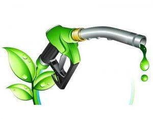 column-biofuel1-400x311
